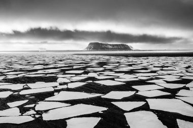 Арктикада ҳаво ҳарорати +35 даражага етди
