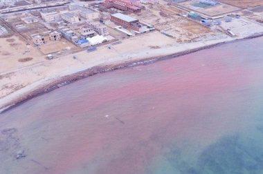 Каспий денгизининг суви қизил рангга кирди. Бу ниманинг аломати?