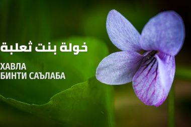 Хавла бинти Саълаба