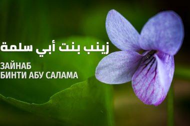 Зайнаб бинти Абу Салама